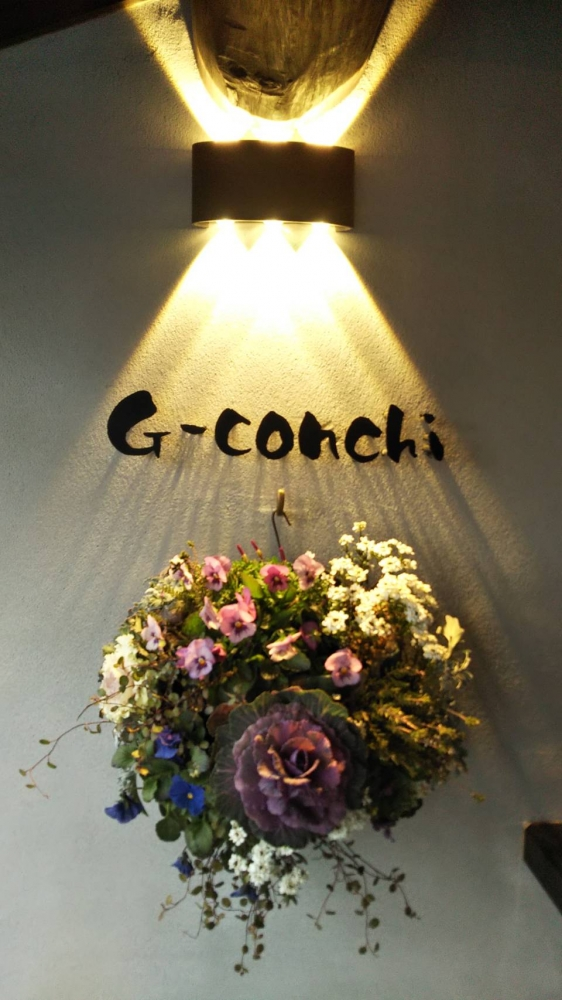 G-conchi